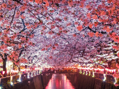 Japan-TravelZeg