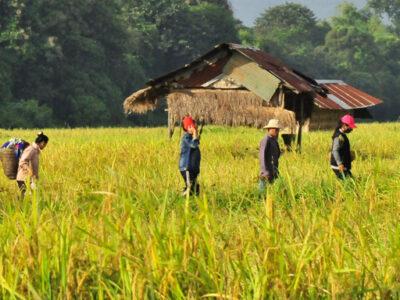 Laos-TravelZeg